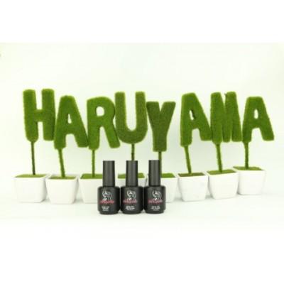Базы Haruyama